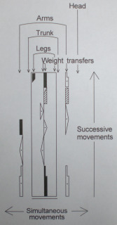 Labanotation diagram or staff