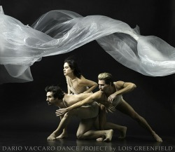 Dario Vaccaro Dance Project