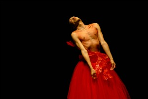 Dance Pictures: Luis Viana, Arrojo